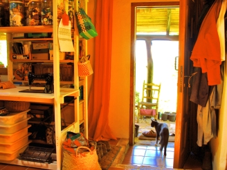 monkey and sofia el pocito interior 06