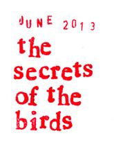 monkey and sofia blog the secrets of the birds